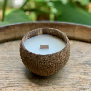 Coconut Soy Candles – Coconut Scent