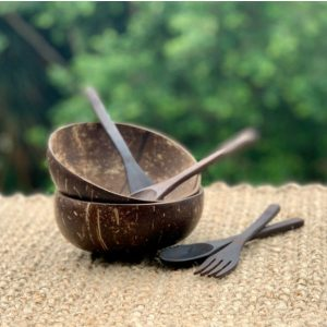 2 Coconut Bowls with cutlery