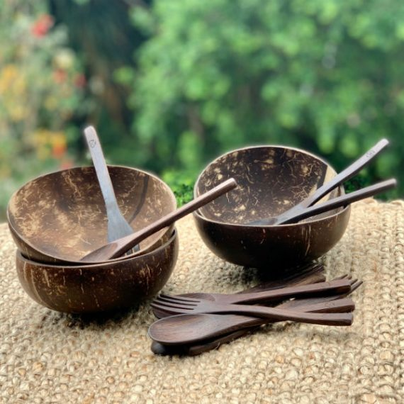 4 Coconut Bowls Combo with cutlery