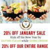 eco-20-off-january-blog-image
